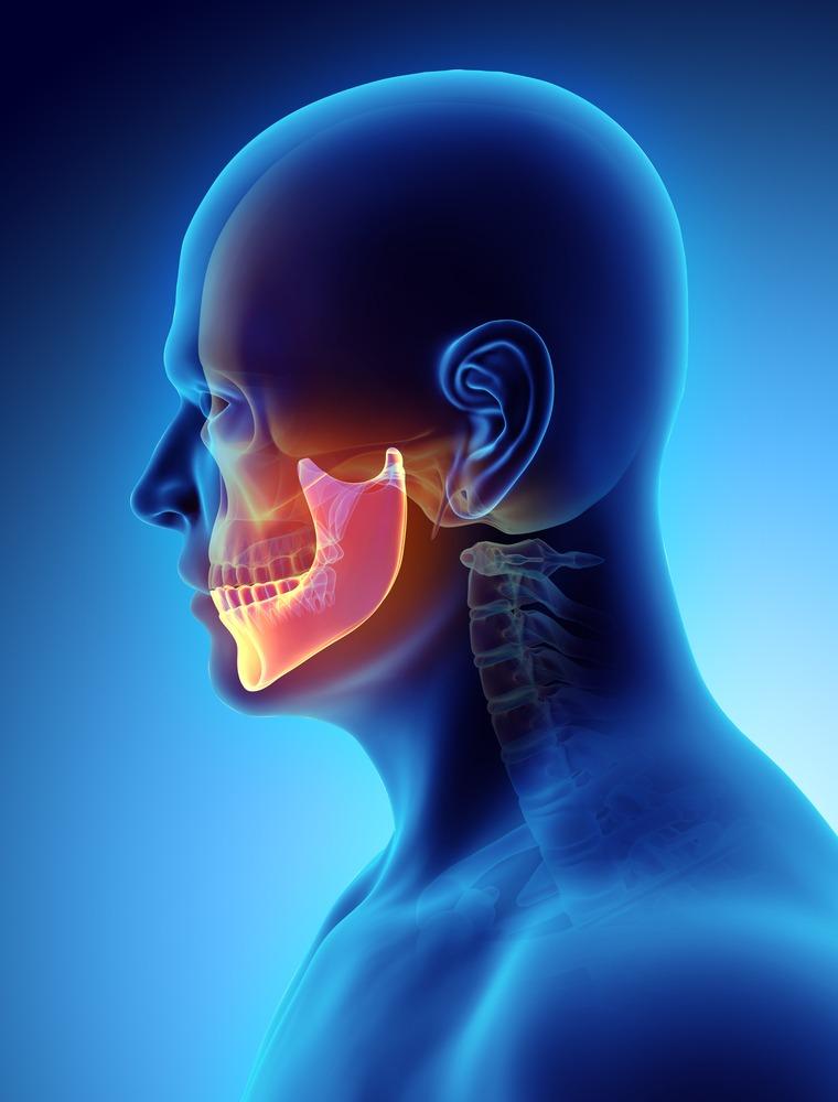 animation of teeth & jaw bone
